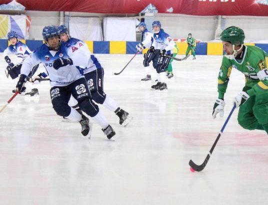 Клуб по хоккею с мячом из Архангельска «Водник»