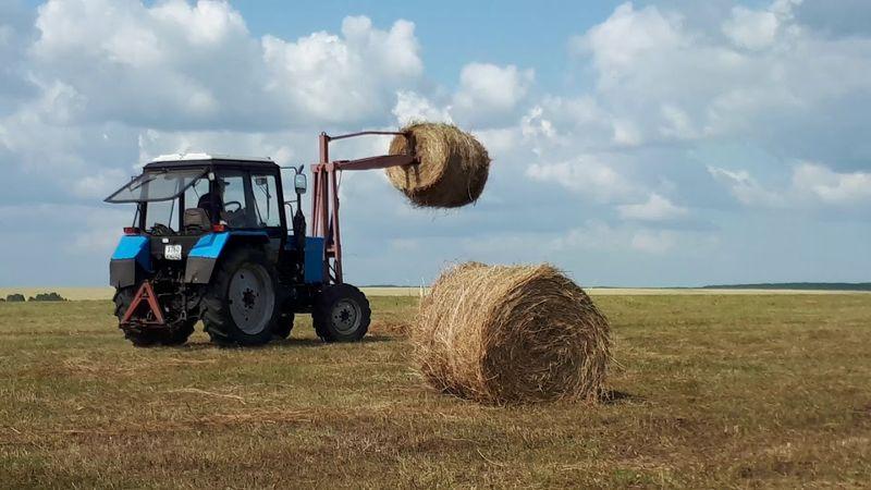 АПК_агропром_сельское хозяйство_заготовка