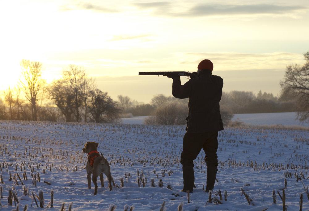охота с ружьем бронко фото семейство