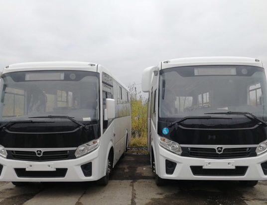 автобусы Вектор Некст
