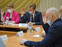 Депутаты Новодвинска распределили дополнительные поступления городского бюджета