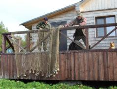 Посетителей экологической тропы в парке «Онежское Поморье» познакомят с бытом и историей рыболовецких тоней